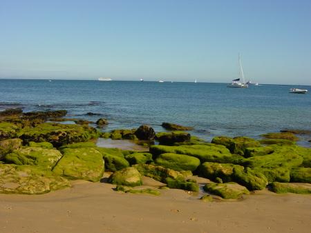 Ocean_Portugalia